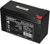 Аккумулятор для ИБП IPPON IP12-7,0 (12В/7 А·ч)