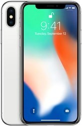 Смартфон Apple iPhone X 256GB (серебристый)