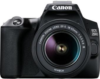 Зеркальный фотоаппарат Canon EOS 250D Kit 18-55 f/3.5-5.6 III + SB310 + SDHC (черный)