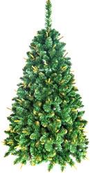 Сосна GreenTerra Сибирская с молодыми побегами (золотистый) 1.2 м