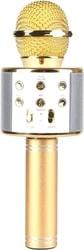 Микрофон Wise WS-858 (золотистый)