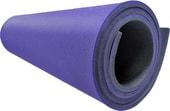 Туристический коврик Isolon Sport 10 (фиолетовый/черный)