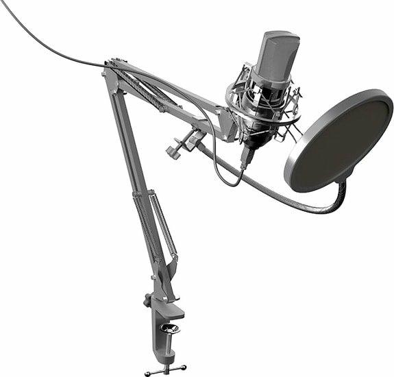 Микрофон Ritmix RDM-169