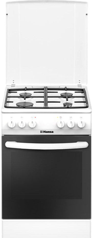 Кухонная плита Hansa FCMW58040